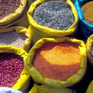 taste-of-nepal-0020